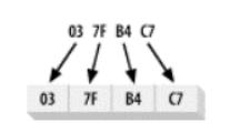 大端字节顺序
