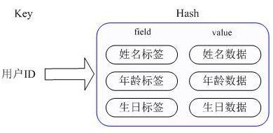 hash存储